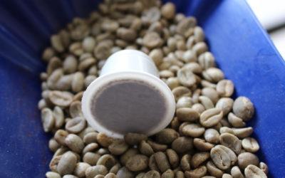 Las cápsulas de café que aman al planeta